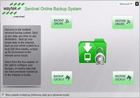 Sentinel Online Backup