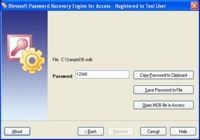 Password Recovery Engine for Access