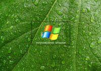 Free Windows Vista Screensaver