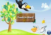 Oiseaux Puzzles pour enfants
