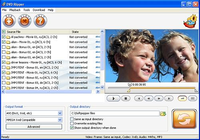 SoftPepper DVD Ripper