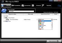 Blu-ray vers MKV