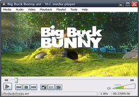 VLC media player portable
