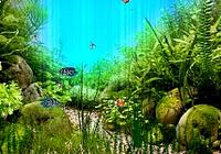 nfsUnderwater10