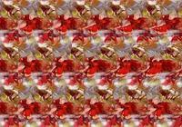 Free Stereogram Screensaver
