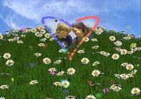 3D Valentine's Day Screensaver