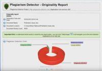 Plagiarism Detector