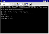 Recovery for Windows Registry