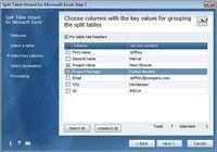 Split Table Wizard for Microsoft Excel