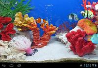 Poissons tropicaux d'aquarium