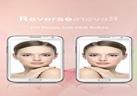 Miroir non-inversion
