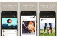 Yummypets Android