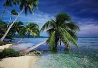 dArt Tropical Islands vol.1