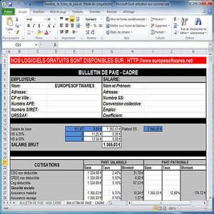 Modele Fiche De Paie Excel Gratuit Zjp04 Napanonprofits