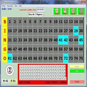 Bingo Software Kostenlos
