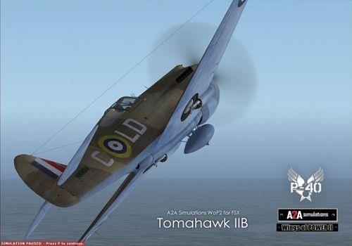 FS-Wings of POWER II-P-40 Warhawk