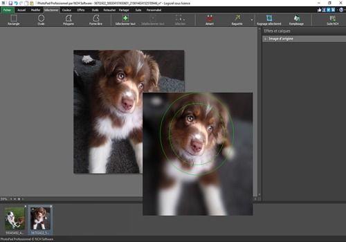 Download PhotoPad - Éditeur d'images gratuit 5 27 for